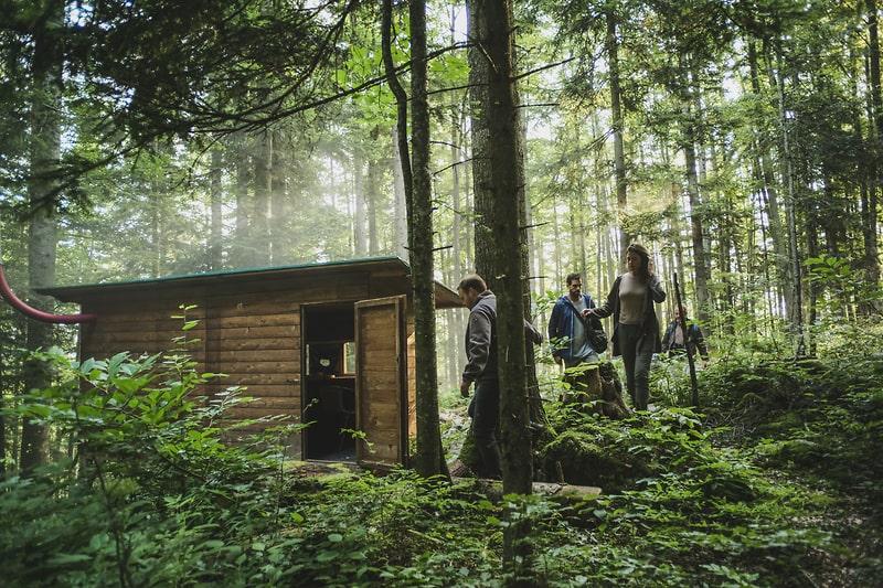 Vanuit een observatiehut beren kijken in Slovenie