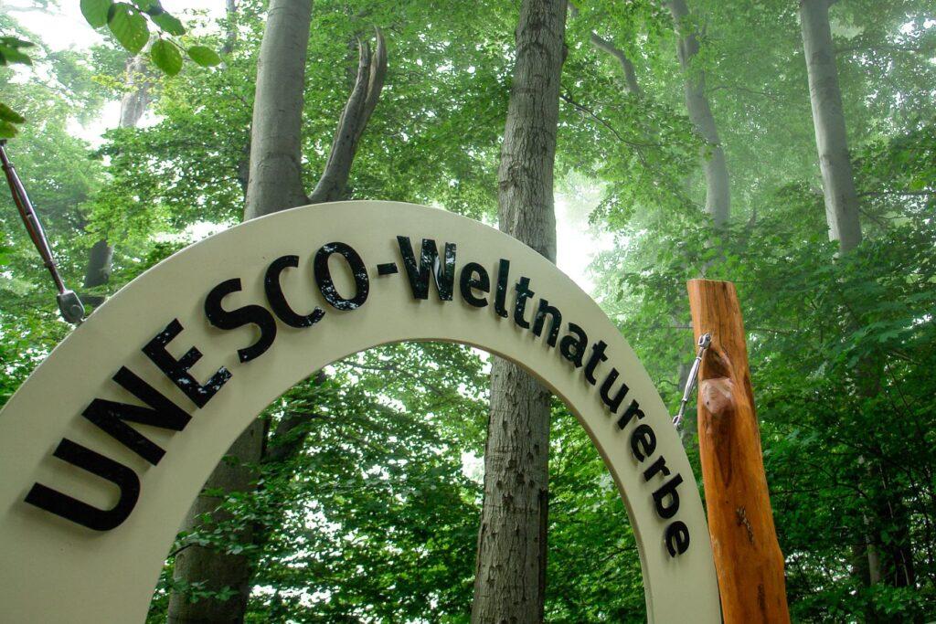 Nationaal Park Jasmund UNESCO